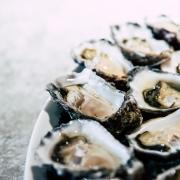 Cómo preparar el marisco perfecto