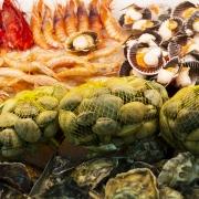 Beneficios del pescado para la vuelta a la rutina